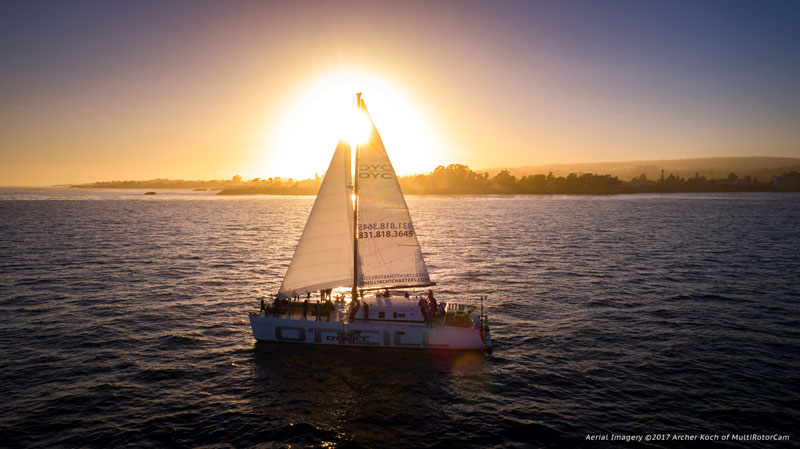 team-oneill-catamaran-archer-koch-sunset