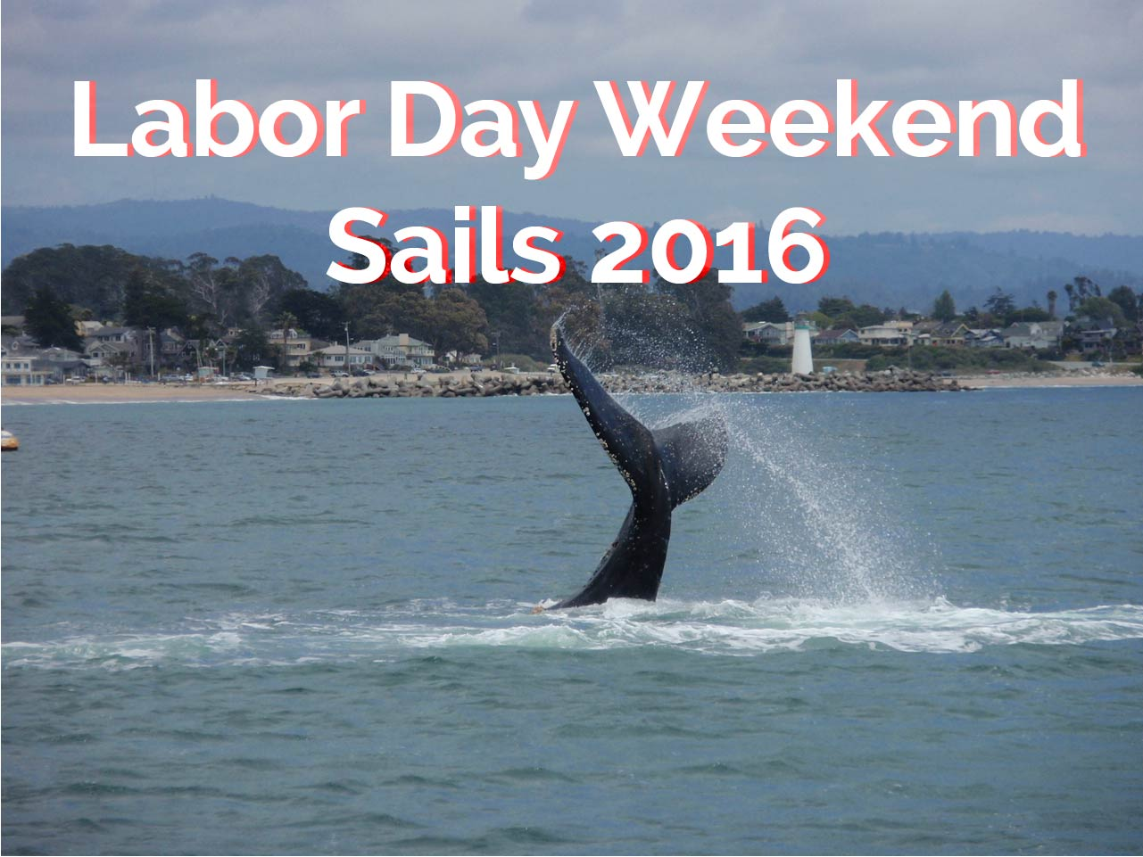 Labor Day Weekend 2016 Sails
