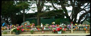 jack-oneill-memorial-flowers