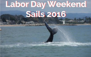 oneill-yacht-charters-whale-labor-day-2016